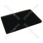 Electrolux TOSANSAC Vacuum Cleaner Filter